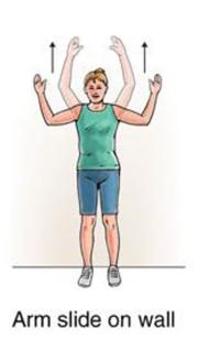 Upper Back Strain Exercises New York Neck Exercises